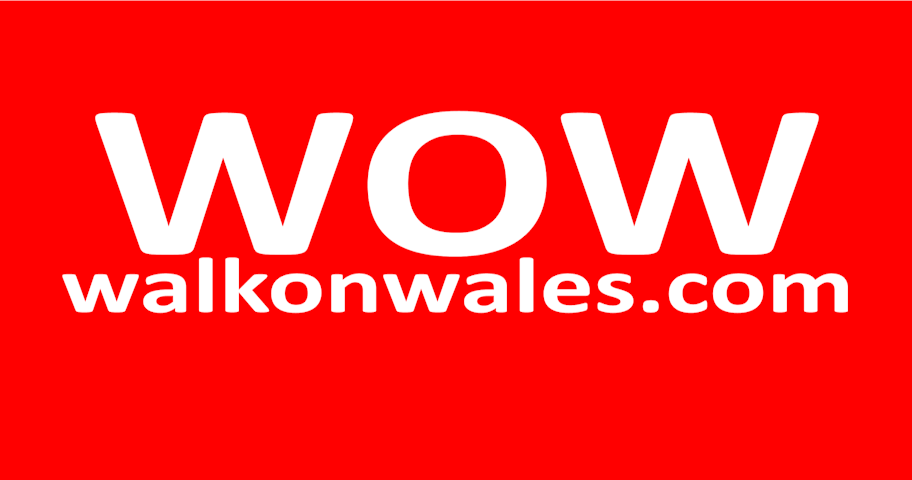 WOW2015-Poster-Web-912x480